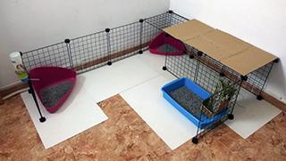 Jaulas para conejos: consejos y alternativas